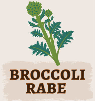 Broccoli Rabe Illustration