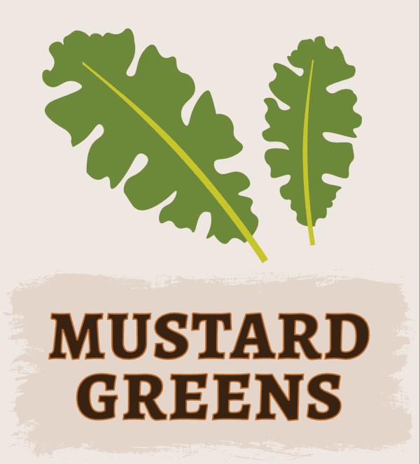 Mustard Greens Illustration