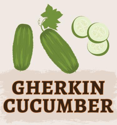 Gherkin Cucumber